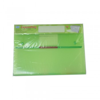 CBE 4315 13P Expanding File (A4) Green